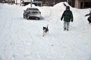Снежные завалы в Векшино